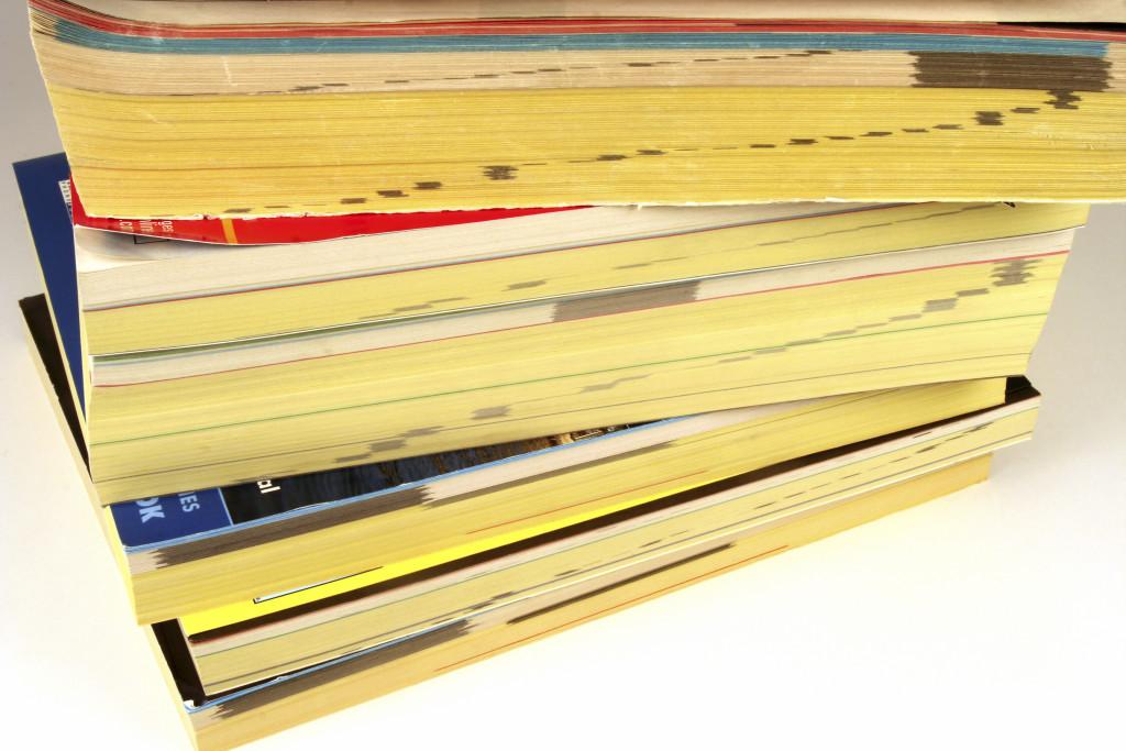 iStock_000001814881_phone books